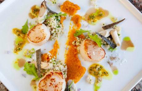 Los Cabos Culinary Experience