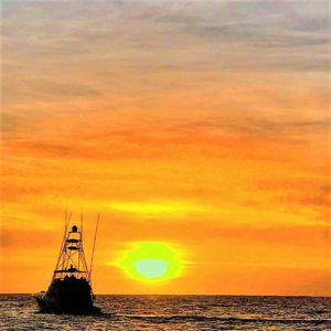 Expeditions cabo sailing