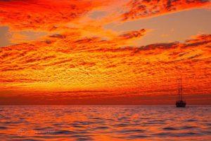 Los cabos sunset sailing
